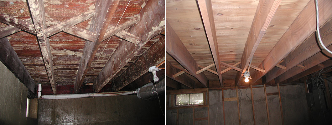Mold Before and After Soda Blasting